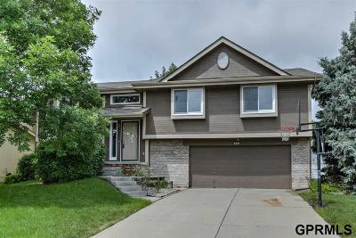 Omaha Single Family Home For Sale: 4510 S 145th Street