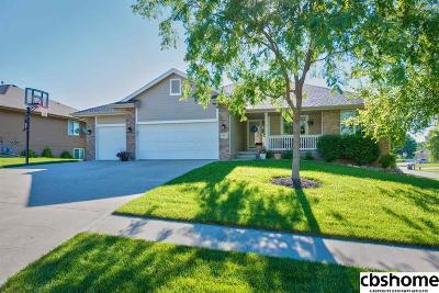 Gretna Single Family Home New: 10021 S 202 Circle