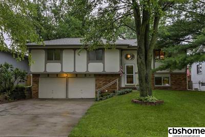 Omaha Single Family Home New: 13543 Grover Street