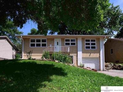 Omaha Single Family Home New: 6230 Park Lane Drive