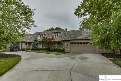 Omaha Single Family Home New: 9906 Harney Parkway S