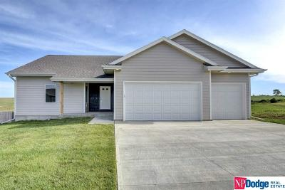 Single Family Home For Sale: 2891 Ravae Lane