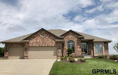 Omaha NE Single Family Home New: $389,900