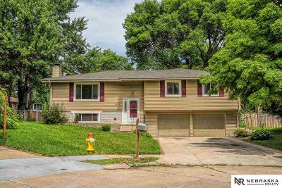Omaha Single Family Home For Sale: 6707 S 139th Avenue Circle