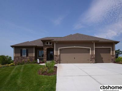 Omaha Single Family Home For Sale: 11016 S 175th Avenue