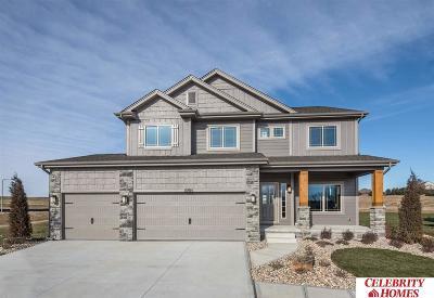 Omaha Single Family Home For Sale: 17807 Tibbles Street