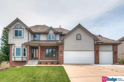 Papillion Single Family Home For Sale: 803 Graham Drive