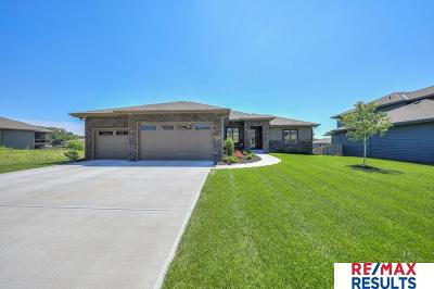 Omaha Single Family Home For Sale: 1707 S 207 Street