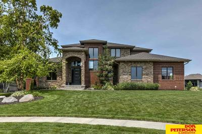 Fremont Single Family Home For Sale: 2958 Antler Circle