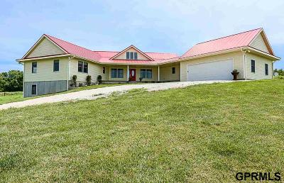 Underwood Single Family Home For Sale: 23391 272nd Street