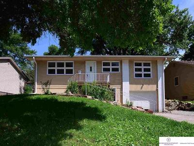 Omaha Single Family Home For Sale: 6230 Park Lane Drive