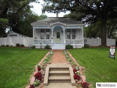 Plattsmouth Single Family Home For Sale: 904 S 9th Street
