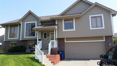 Papillion Single Family Home For Sale: 4615 Brook Street