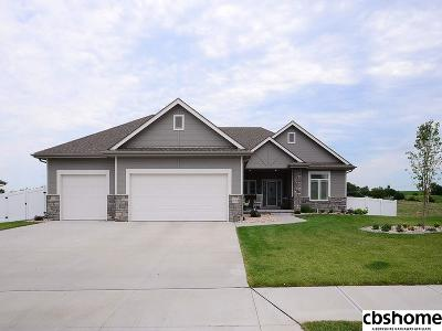 Papillion Single Family Home For Sale: 11769 S 110th Street
