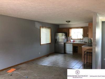 Bellevue Single Family Home For Sale: 2802 Franklin Street