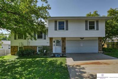 Omaha Single Family Home New: 4508 N 116 Avenue