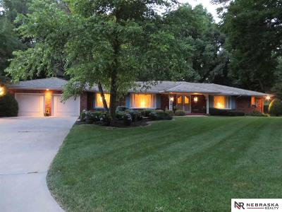 Omaha Single Family Home For Sale: 9606 Frederick Street
