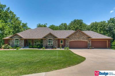 Omaha Single Family Home New: 10910 John J Pershing Drive