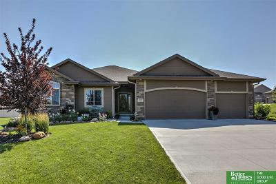 Papillion Single Family Home New: 12729 S 82 Street