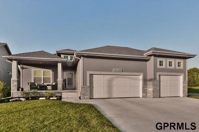 Omaha Single Family Home New: 20003 Nina Street