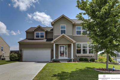 Papillion Single Family Home New: 10605 S 110th Street