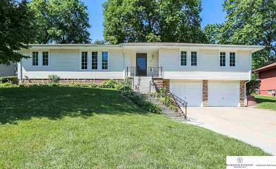 Omaha Single Family Home New: 1350 S 133 Street