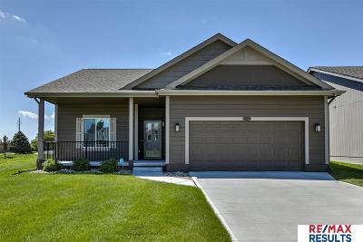 Single Family Home New: 14259 Martin Street
