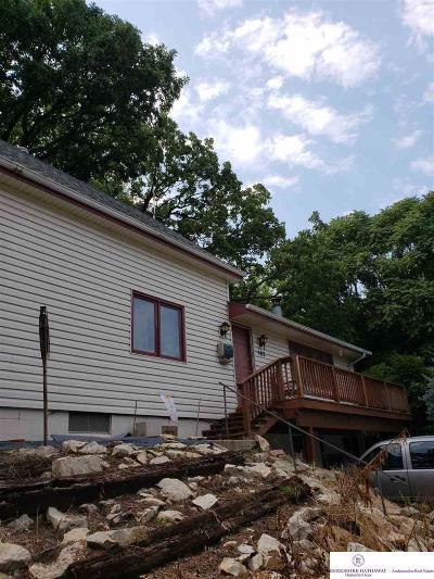 Plattsmouth Single Family Home For Sale: 502 N 7 Street