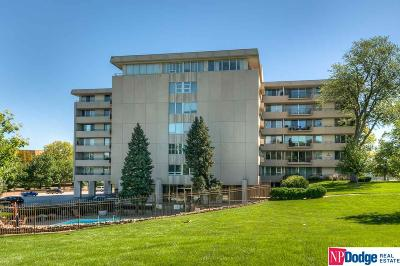 Omaha Condo/Townhouse For Sale: 8405 Indian Hills Drive #6-8