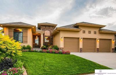 Omaha Single Family Home For Sale: 1316 S 199 Street