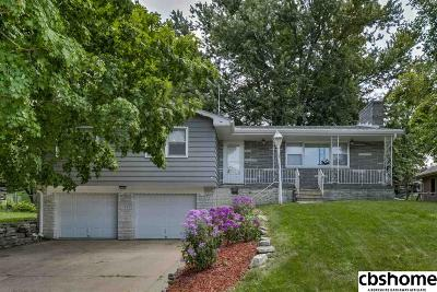 Omaha Single Family Home For Sale: 8235 Sprague Street