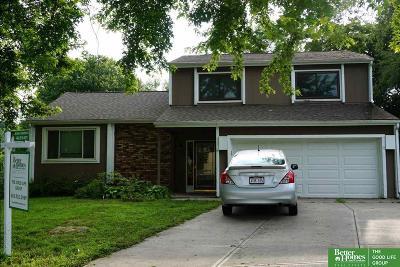 Bellevue Single Family Home For Sale: 1007 Julius Place