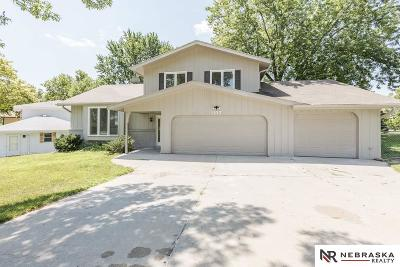 Bellevue Single Family Home For Sale: 1107 Somerset Drive
