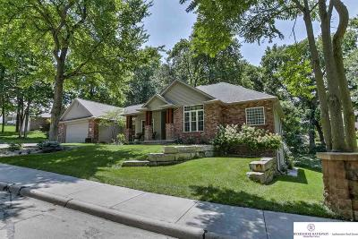 Bellevue Single Family Home For Sale: 1401 Robinwood Drive