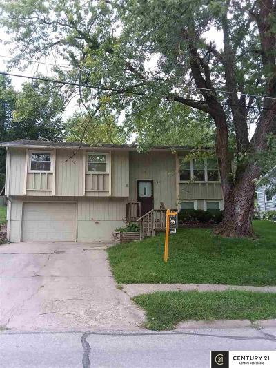Plattsmouth Single Family Home For Sale: 1337 Lincoln Avenue