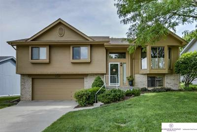 Omaha Single Family Home For Sale: 15207 Bedford Avenue