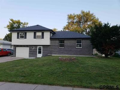 Omaha Single Family Home For Sale: 5417 S 105 Street