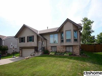 Bellevue Single Family Home For Sale: 3459 Rahn Boulevard