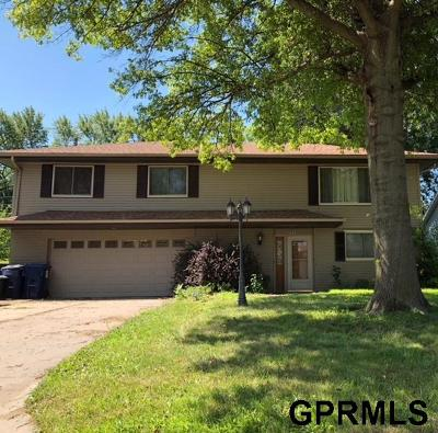 Ashland Single Family Home For Sale: 2517 Kendel Drive