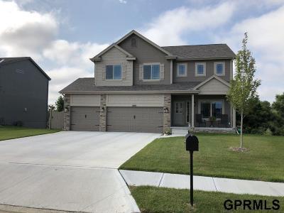 Bellevue Single Family Home For Sale: 2009 Meadowlark Lane