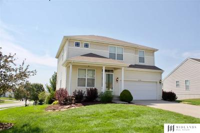 Single Family Home For Sale: 2314 Ridgeview Drive