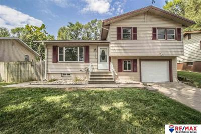Bellevue Single Family Home For Sale: 7306 Chandler Acres Drive