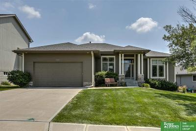 Single Family Home For Sale: 21213 Schofield Drive