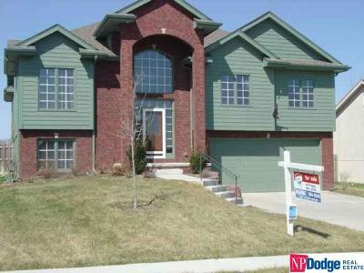 Papillion Single Family Home For Sale: 612 Diamond Lane