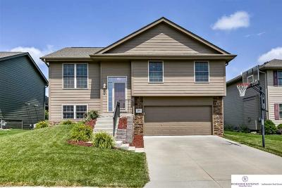 Council Bluffs Single Family Home For Sale: 4918 Cedarbrook Drive