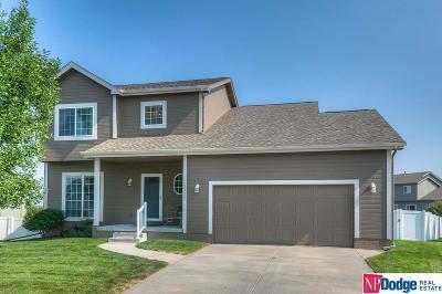 Omaha Single Family Home For Sale: 16302 Meredith Avenue
