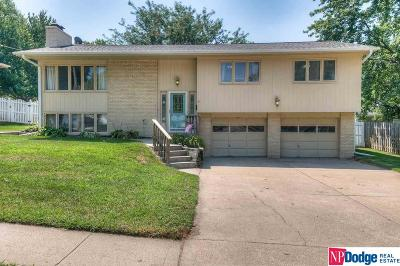 Single Family Home For Sale: 403 Matthies Drive