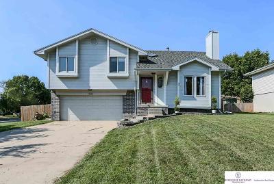 Sarpy County Single Family Home New: 3416 Schuemann Drive