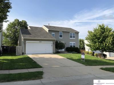 Omaha NE Single Family Home New: $225,000