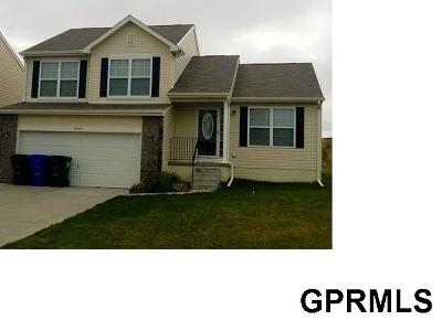 Omaha NE Single Family Home New: $192,000